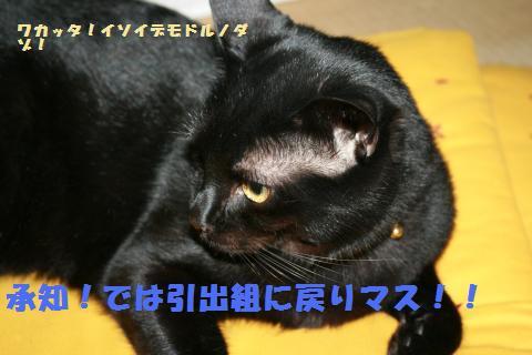013_convert_20101205002006.jpg