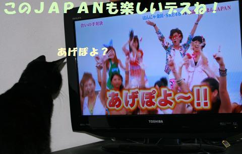 013_convert_20111002172302.jpg