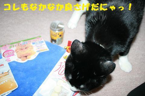 014_convert_20110127230535.jpg
