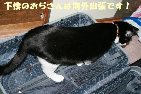 014_convert_20120106230150.jpg