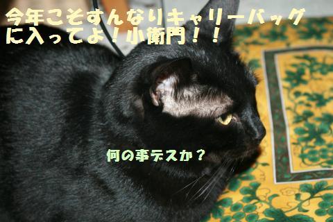 014_convert_20120211172613.jpg