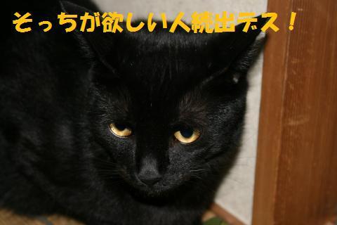 015_convert_20100702194954.jpg