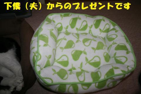 015_convert_20110430231840.jpg