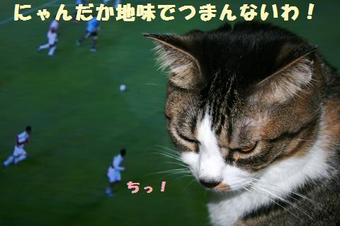 015_convert_20110720222631.jpg