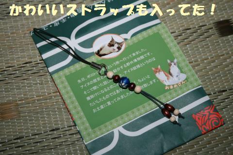 015_convert_20110726222425.jpg