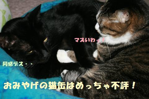 015_convert_20120115235625.jpg