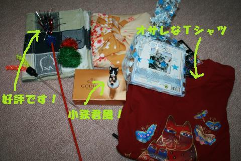 016_convert_20110210173833.jpg