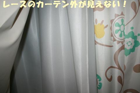 016_convert_20110608222210.jpg