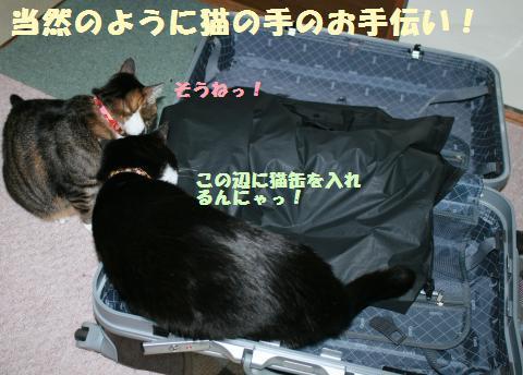 016_convert_20120106230240.jpg