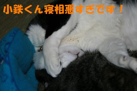017_convert_20100420224321.jpg