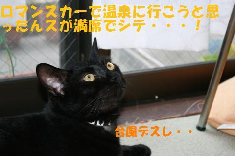 017_convert_20100812185247.jpg