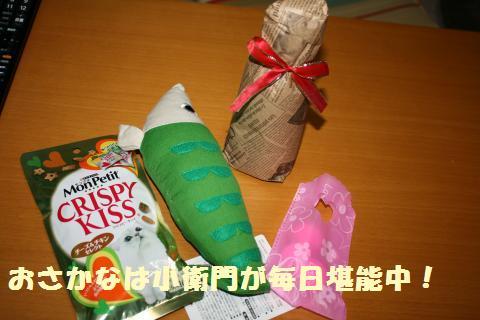 017_convert_20110818153613.jpg