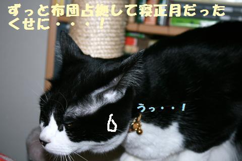 017_convert_20120104214836.jpg