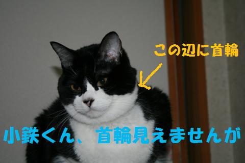 018_convert_20100304224048.jpg
