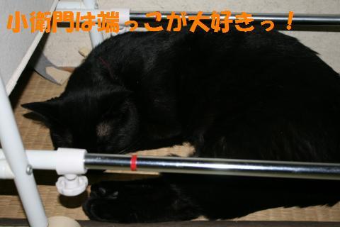 018_convert_20100530220835.jpg