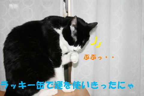 018_convert_20100819215026.jpg
