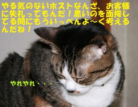 018_convert_20101031164826.jpg