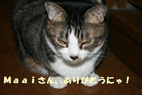 018_convert_20110621203357.jpg