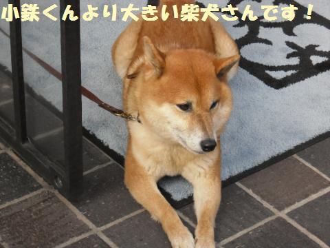 018_convert_20111007233233.jpg