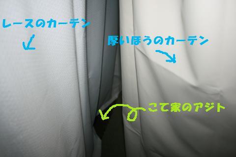 019_convert_20110608222338.jpg