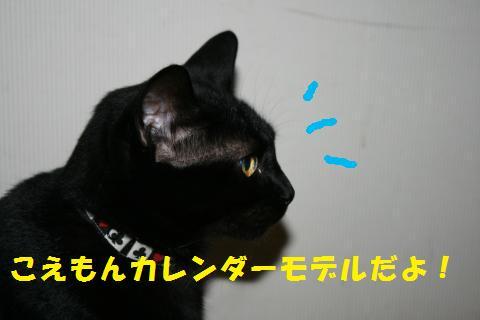 020_convert_20100925211436.jpg