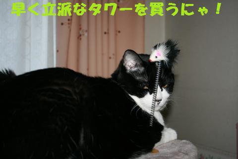 020_convert_20110102213140.jpg