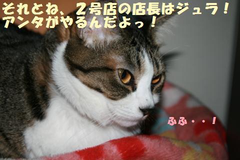 020_convert_20110521233816.jpg