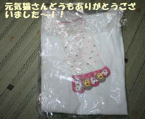 020_convert_20110811222445.jpg