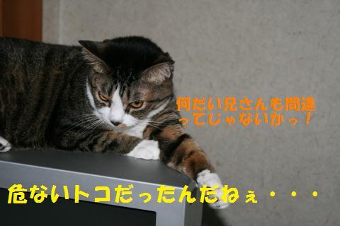 021_convert_20100807132944.jpg