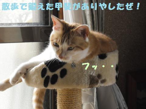 021_convert_20110610145251.jpg