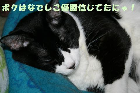 021_convert_20110719231522.jpg