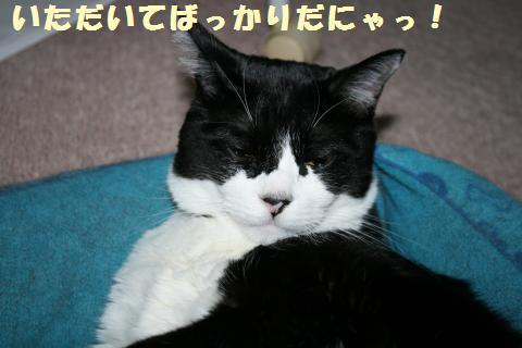 021_convert_20111013174209.jpg