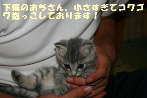 021_convert_20111018231607.jpg