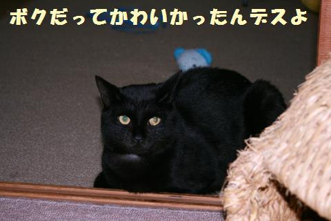 021_convert_20111102234558.jpg