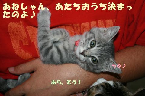 021_convert_20111127000209.jpg