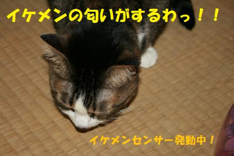 022_convert_20100704180843.jpg