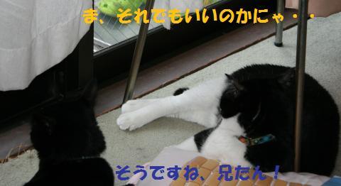 022_convert_20100801225045.jpg