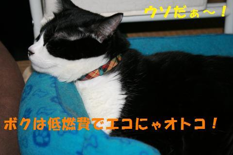 022_convert_20100917230011.jpg