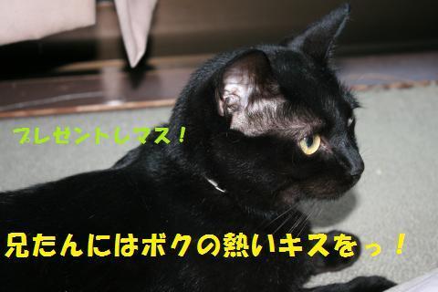 022_convert_20100918161954.jpg