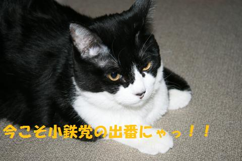 022_convert_20100927222738.jpg