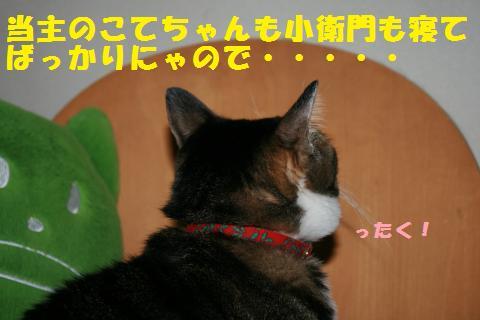 022_convert_20101231151802.jpg