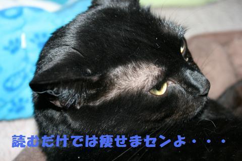 022_convert_20110421191740.jpg