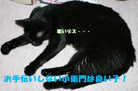 022_convert_20110618185108.jpg