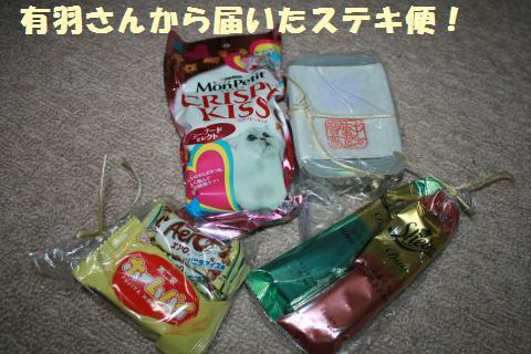 022_convert_20110628230516.jpg