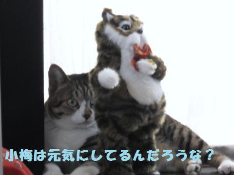 022_convert_20110910165111.jpg