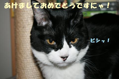 022_convert_20120104214937.jpg