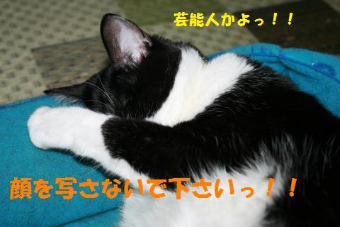 023_convert_20100908231558.jpg