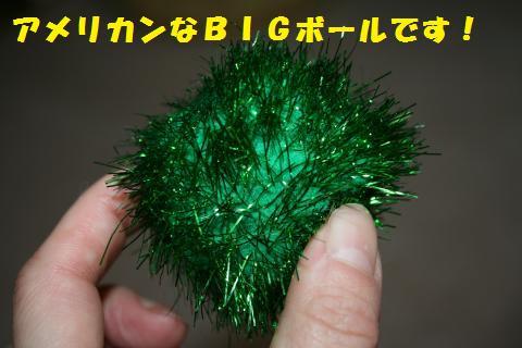 023_convert_20110216194235.jpg