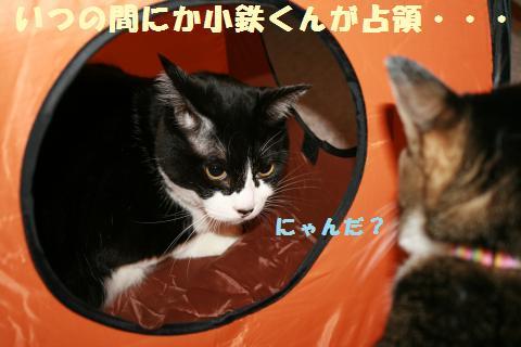 023_convert_20110802180530.jpg