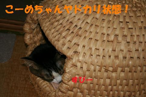024_convert_20100414002220.jpg